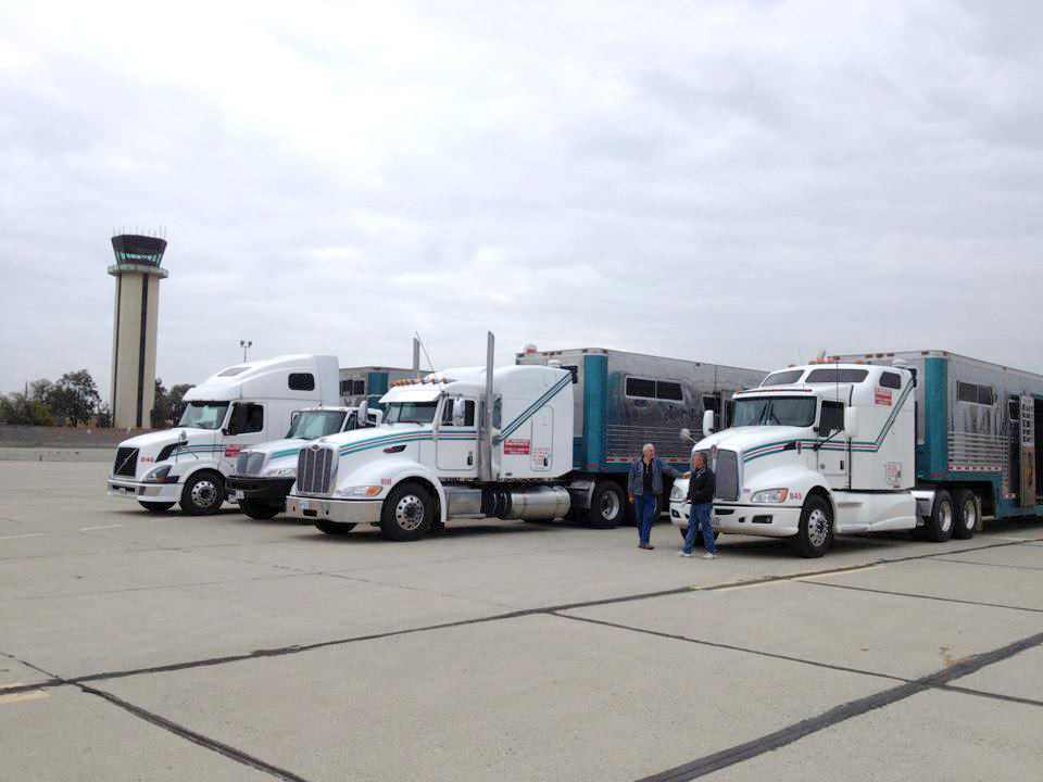 TRUCKS-AT-AIRPORT